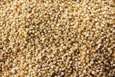 Древнеафриканское зерно может стать новым суперпродуктом
