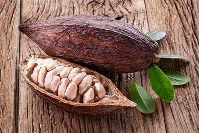 Мировые цены на какао могут вырасти
