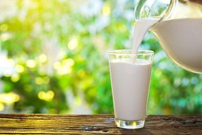 Почти 4% молочной продукции в России является поддельной