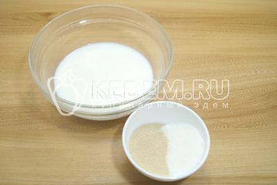 В  теплом молоке (200 мл.) развести дрожжи с сахаром.