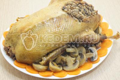 Выложить утку на праздничное блюдо. Украсить утку обжаренными грибами, зеленью и овощами.