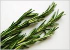 Розмарин: морская роса или трава воспоминаний