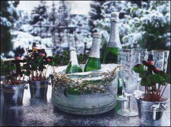 Лёд и шампанское - сервировка стола - идеи о том, как встретить гостей, сделать красивое украшение новогоднего стола, устроить незабываемый Новый год