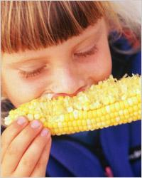питание по диете кима протасова
