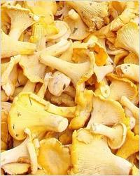 Грибы лисички.  Кулинарная обработка грибов. Рецепты с грибами лисичками.