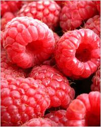 Малина: «медвежья ягода»