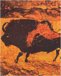 Палеодиета или назад в каменный век