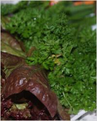 Зелень и травы. Лакто-ово-вегетарианство.