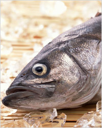 Как приготовить рыбу: 10 кулинарных советов