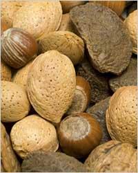 TOP 10 продуктов для красивых зубов - Орехи (миндаль, кедровый орех, кешью)