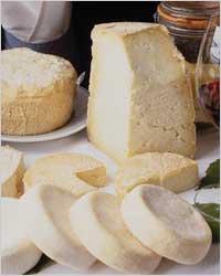 TOP 10 продуктов для красивых зубов - Молочные продукты (сыр, творог, йогурт)