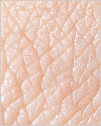 Какой витамин отвечает за кожу