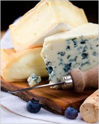 Сыр с плесенью доклад 9721