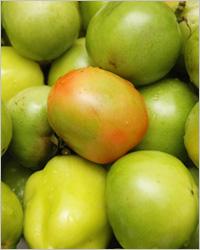 Варение из зелёных помидоров. Заготовки из помидор