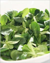 Теплый салат из больших бобов – кулинарный рецепт
