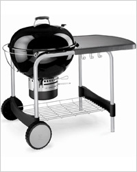 Weber One-Touch Pro Classic Station