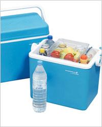 Переносные холодильники: техника лета – Какой переносной холодильник купить. Как выбрать. Обзор переносных холодильников