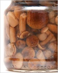 Маринованные опята – Рецепты маринованных опят
