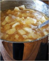 Заготовка из яблок для пирогов
