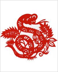 Новый 2013 год Змеи