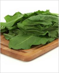 рецепт салат много зелени