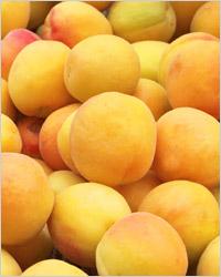 Заготовки из абрикосов