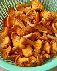 Как приготовить итальянскую пасту с грибами
