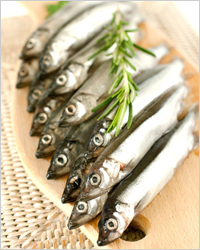 Килька - Рыбные консервы