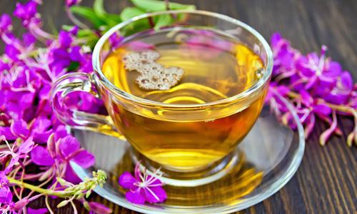 Иван-чай полезные свойства