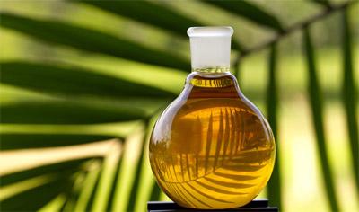 Пальмовое  масло и на стол, и для производства машинной смазки