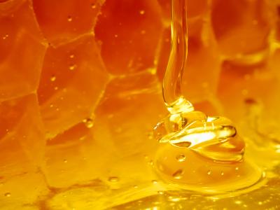 Сила мёда