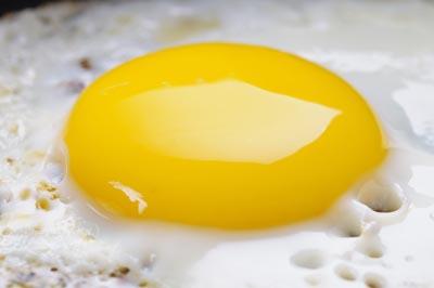 Реабилитация яиц