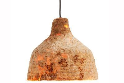 Лампа, на которой растут грибы