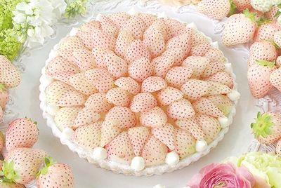 Пирог с белой клубникой продаётся в Японии за 105 долларов