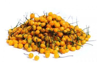 Самый дорогой в мире перец стоит 25 000 долларов