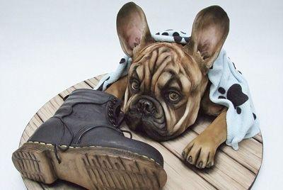 Британский кондитер делает торты в виде собак