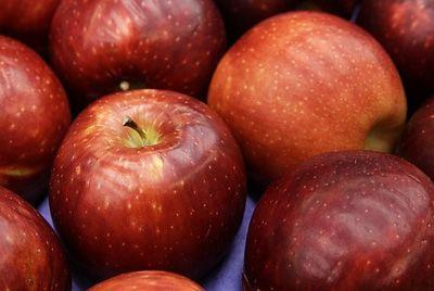 Вашингтонские фермеры создали «космические» яблоки