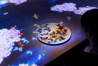 В токийском ресторане открылся уникальный интерактивный зал