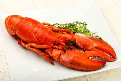 В Швейцарии введен запрет на варку живых омаров