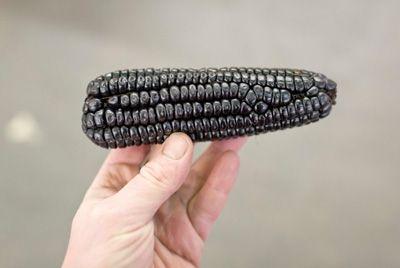 Черные овощи станут трендом в 2018 году