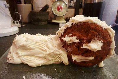 Мать и дочь завоевывают Интернет уродливыми тортами