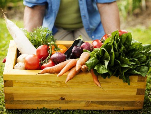 Мировой рынок органических продуктов достигнет 324 миллиардов долларов к 2024 году