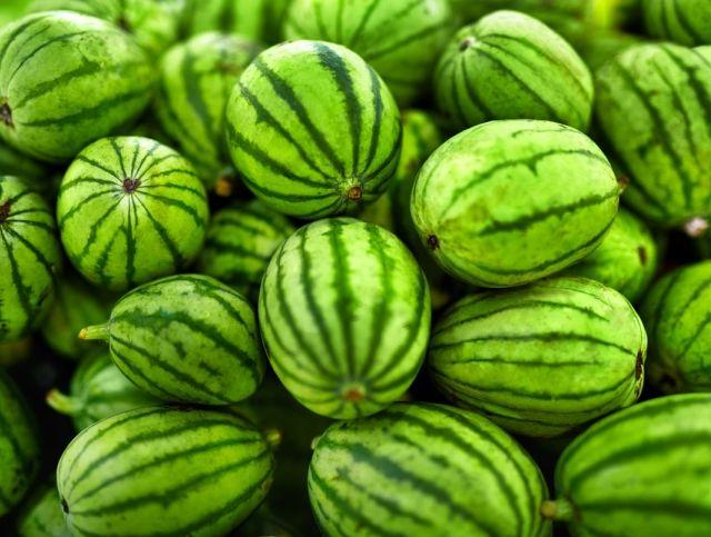 В Турции создали крошечные арбузы размером с оливку