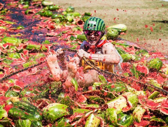В Австралии пройдет арбузный фестиваль