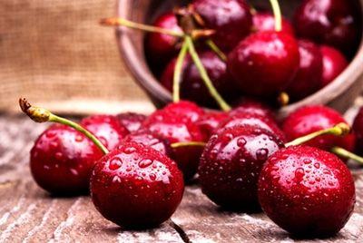 В Кузбассе пройдет вишневый фестиваль