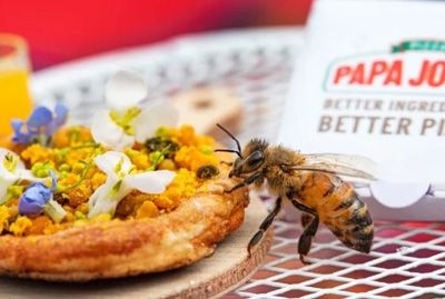 Американская пиццерия приготовила крошечную пиццу для пчел