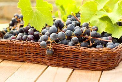 Названо самое дорогое вино в мире