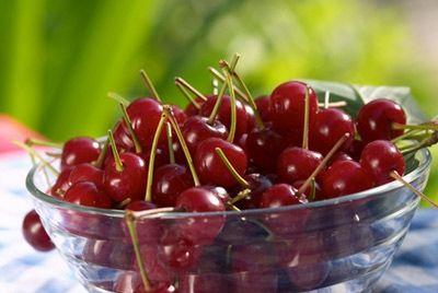 В России вывели новый сорт крупноплодной черешни