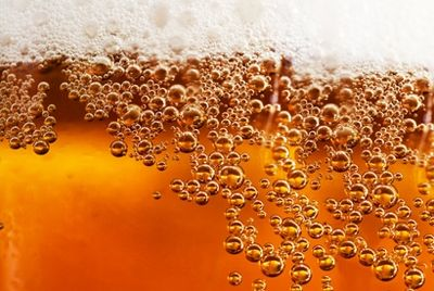 В Америке сварили монастырское пиво из дрожжей XVI века