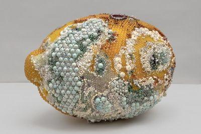 Фрукты, покрытые плесенью из камней